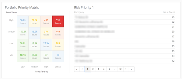Portfolio Issue Risk Matrix - Riskrecon