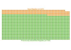 Ripple-Data-Set